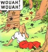 Tintin tropieza