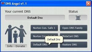 DNS Angel 2